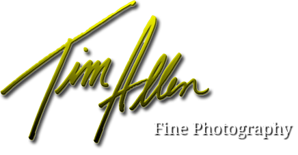 Tim Allen Photography